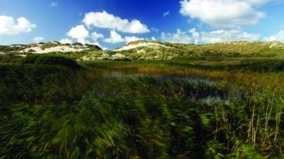 Waddengebied verkozen tot Mooiste Natuurgebied van Nederland
