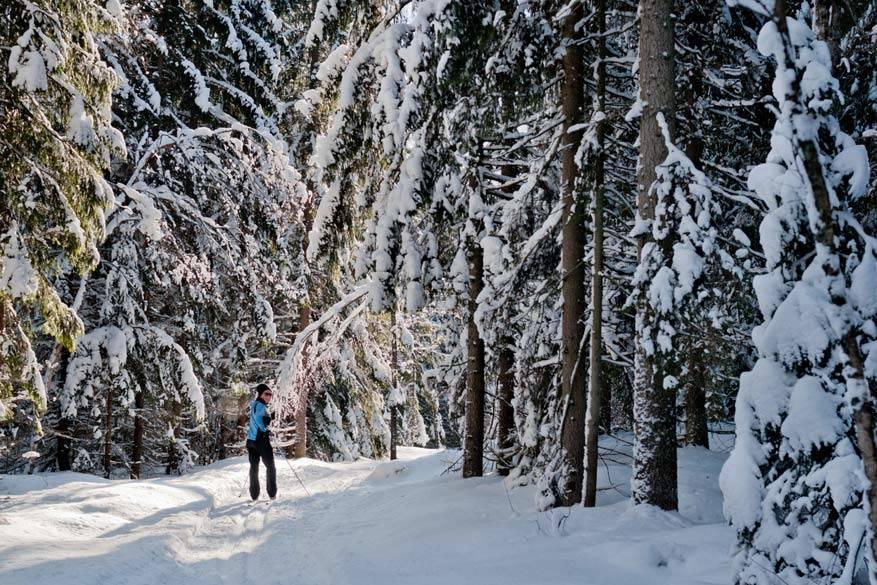 Sneeuwschoenwandelen en langlaufen zijn goede alternatieve voor de traditionele wintersport!