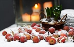 Denemarken: vroeger werd er in Denemarken algemeen aangenomen dat alle dieren konden praten op kerstavond, en niemand wilde dat de dieren op zo'n speciale avond slecht over je zouden spreken. Daarom maken Denen vandaag de dag nog een wandeling in de tuin, in het park of in het bos en belonen ze de beestjes met kleine speeltjes of lekkers. © Toerisme Denemarken