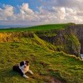 Ierland-romantiek3
