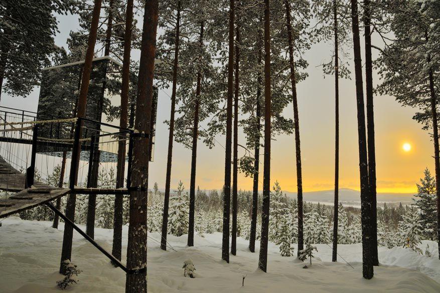 In de buurt van Luleå slaap je zelfs in boomhutten om het noorderlicht beter te kunnen zien!