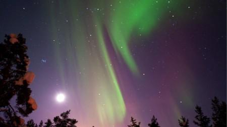 Schiphol vliegt dit jaar rechtstreeks naar Zweeds Lapland