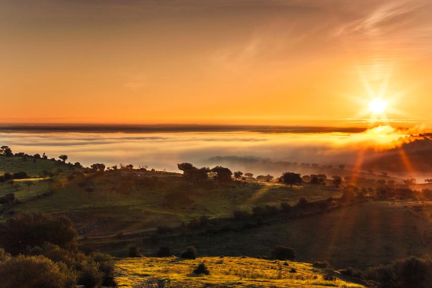 De landschappen in Alentejo spreken voor zichzelf. © Alentjo Toerisme