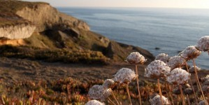 Tien redenen om de Alentejo te bezoeken