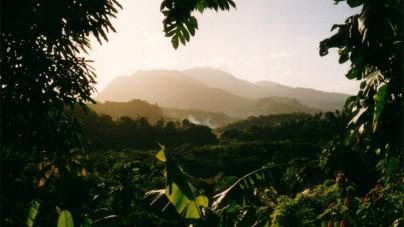 10 x doen in de natuur van Caribisch Dominica