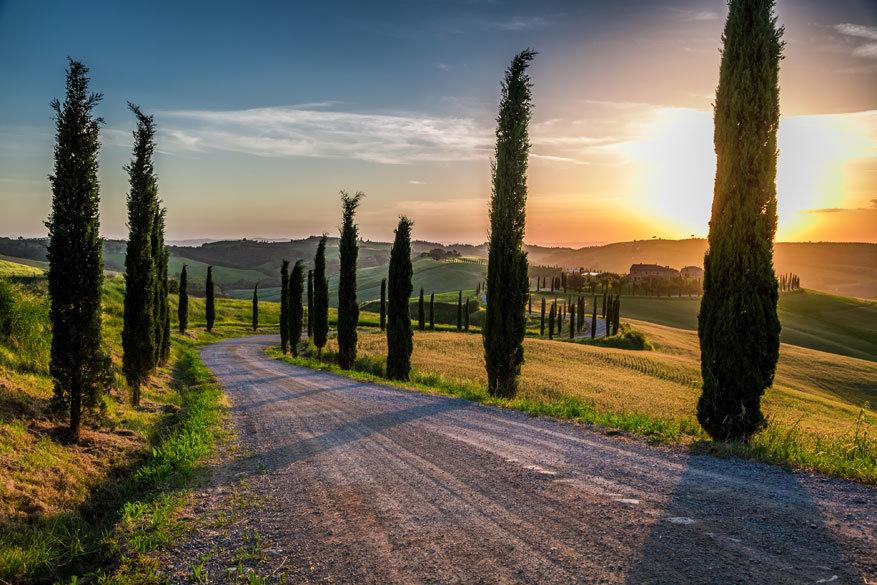 Under the Tuscan Sun: Toscane