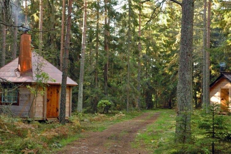 Urnatur in Zweden: Urnatur biedt tal van ecologische accommodaties aan pal in de Zweedse natuur. Zo verblijf je in boomhutten of hutten op de begane grond en pluk je verse blaadjes om je eigen thee te maken. De verwarming werkt op zonne-energie of op door stormen afgebroken stukken hout uit het bos. Hier word je één met de natuur! © Urnatur