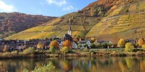 Logeertip aan de Moezel: hotel Weinhaus Berg in Bremm