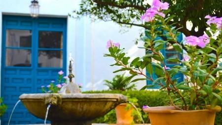 Spaanse lente: patio's kijken in Cordoba