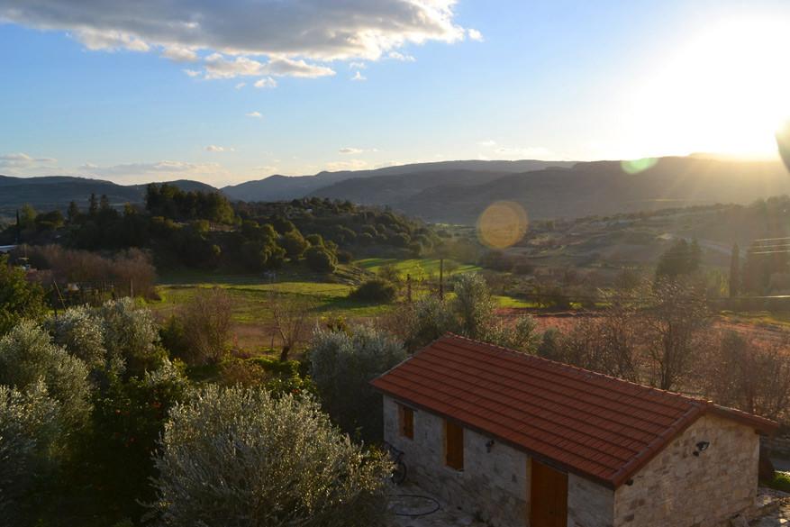 In het Troodosgebergte leer je allerhande wijnen uit Cyprus kennen.