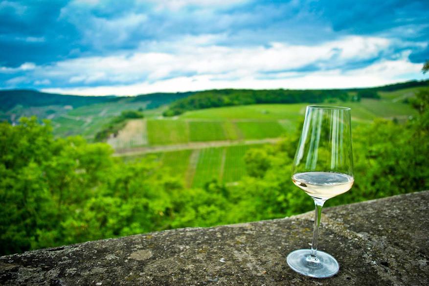 Geen volledige wijnervaring zonder te proeven!