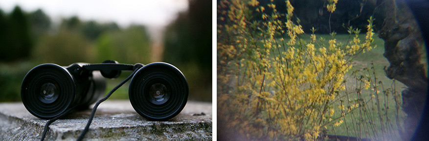 Een verrekijker is niet alleen een natuurlijke zoom, maar geeft ook een origineel effect.