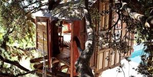 Van boomhut tot cozy camper: 9 unieke en betaalbare AirBnB adresjes