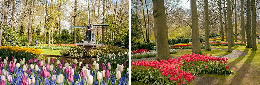Tulpen, hyacinten, lelies en krokussen versieren de bodems van het park.