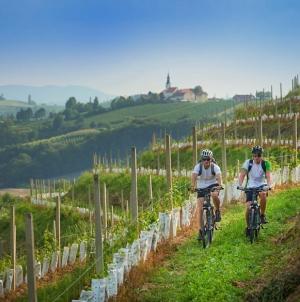 Actief eropuit: met de fiets door groen Slovenië