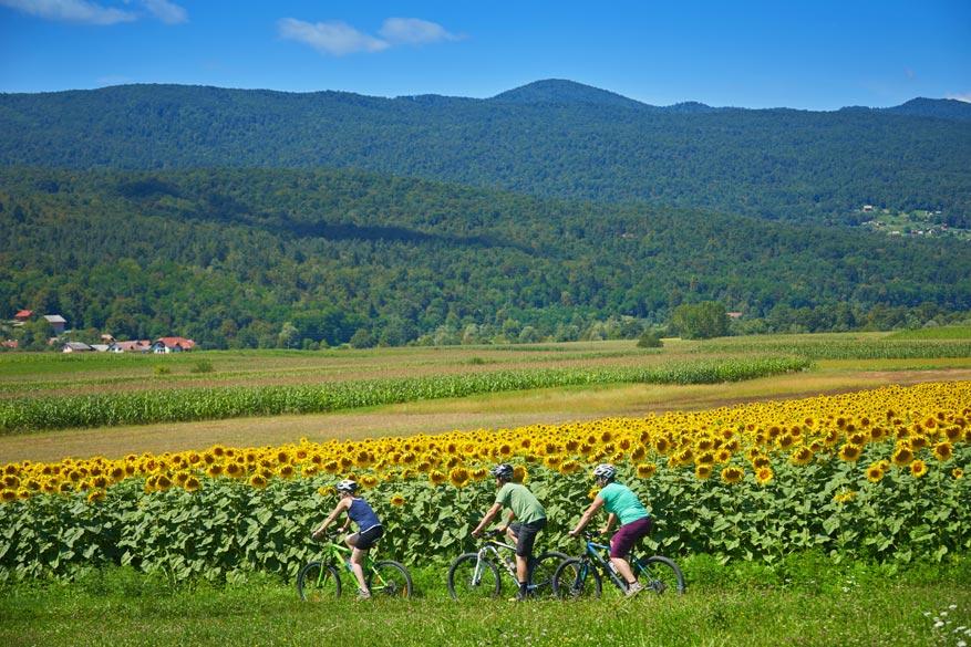 De Ronde van Slovenië staat helemaal in het teken van het groene Sloveense landschap.