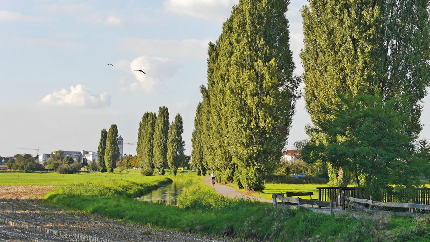 De Kraichradweg brengt je langs prachtige groene landschappen van Baden-Württemberg. © Kraichgau Stromberg Tourismus
