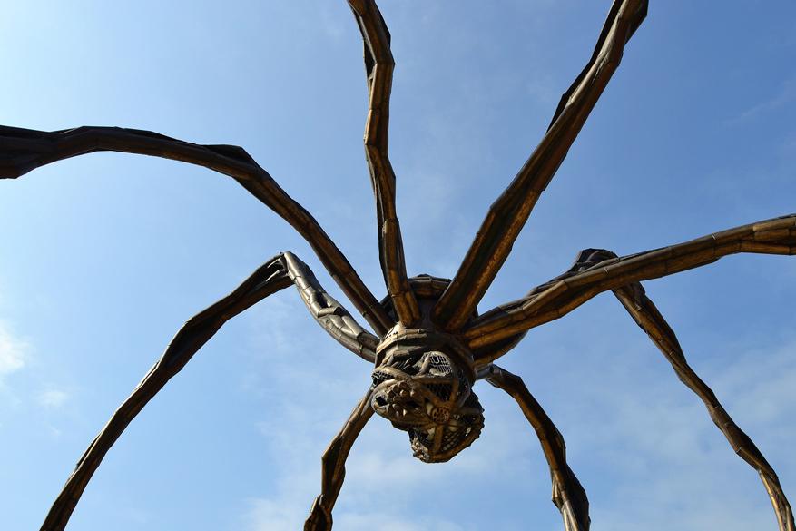 Een indrukwekkend kunstwerk dat je spot in het moderne Bilbao is de reuzespin 'Maman'. © Pixabay