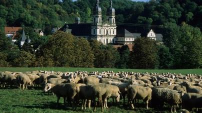Wandelen doorheen de geschiedenis in Duitse Baden-Württemberg