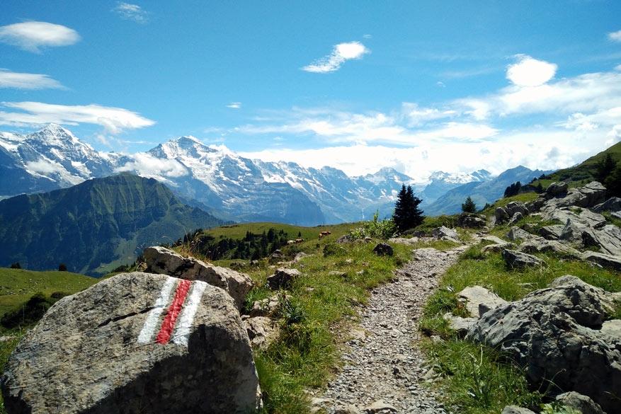 Intersoc: zonder zorgen uitrusten van de Zwitserse Bergen