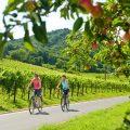 ietsen langs de Deutsche Weinstrasse nabij Landau © Dominik Ketz - Rheinland-Pfalz Tourismus