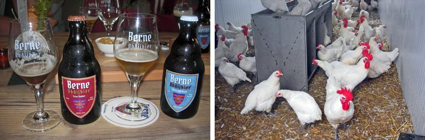 Links: het bier van Abdij van Berne. Rechts: de Poule Den Dungen.