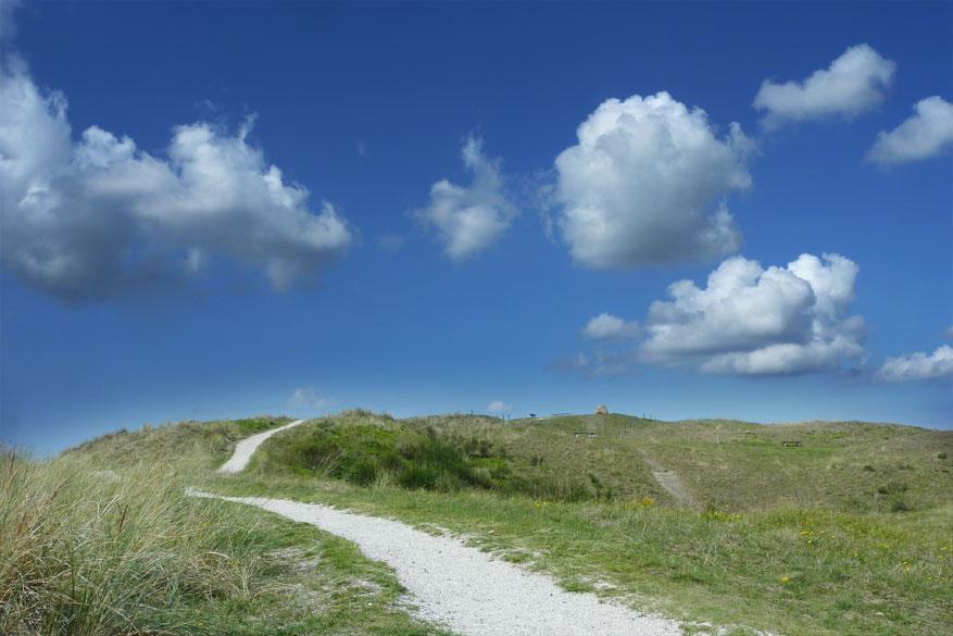 De Hors Texel
