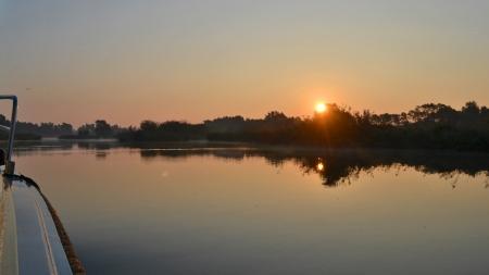 In beeld: zo mooi is de Biesbosch bij zonsopgang