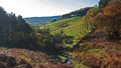 Weekendje Leeds: voor foodies en natuurfans