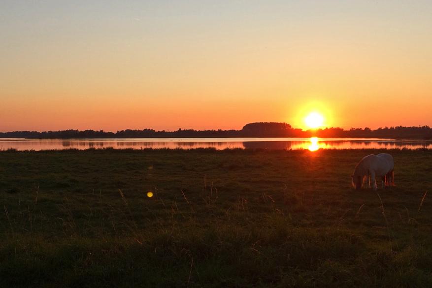 Tijdens de gezellige BBQ zien we de zon achter de horizon verdwijnen.