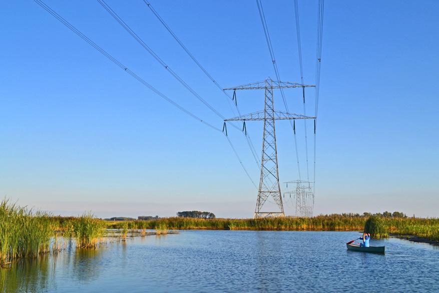De elektriciteitsmasten zijn prominent aanwezig in de Biesbosch.