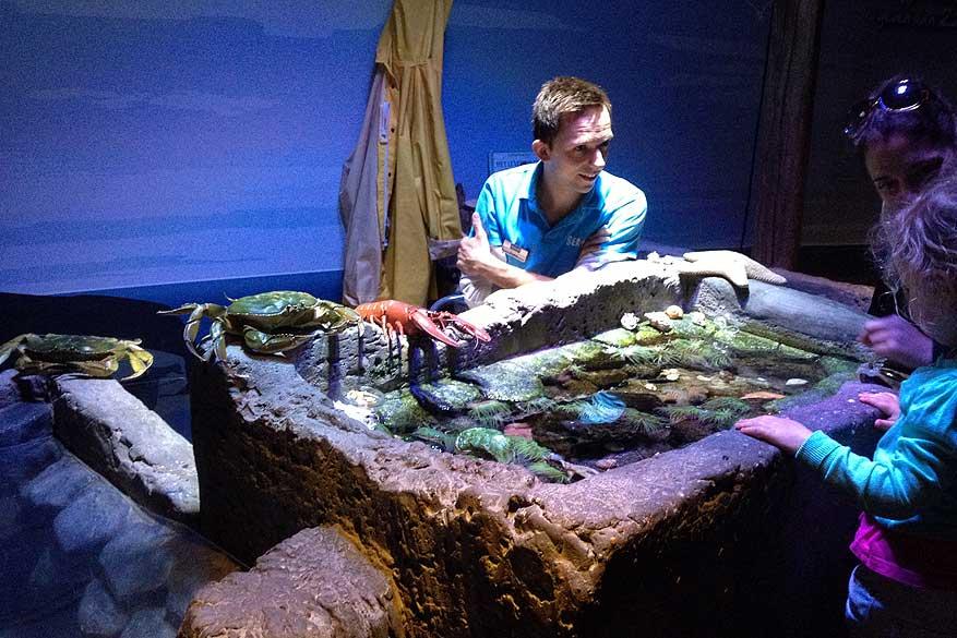 Scheveningen Sea Life