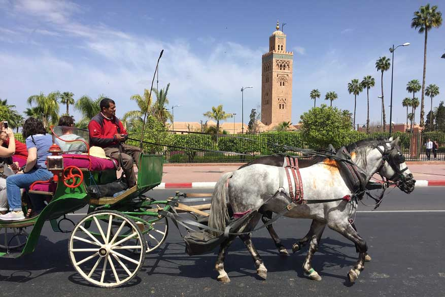 citytrip Marrakech