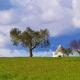 11 redenen om betoverend Apulië op je reislijst te prikken
