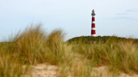 Kunstmaand Ameland: met de locals door artistieke duinen